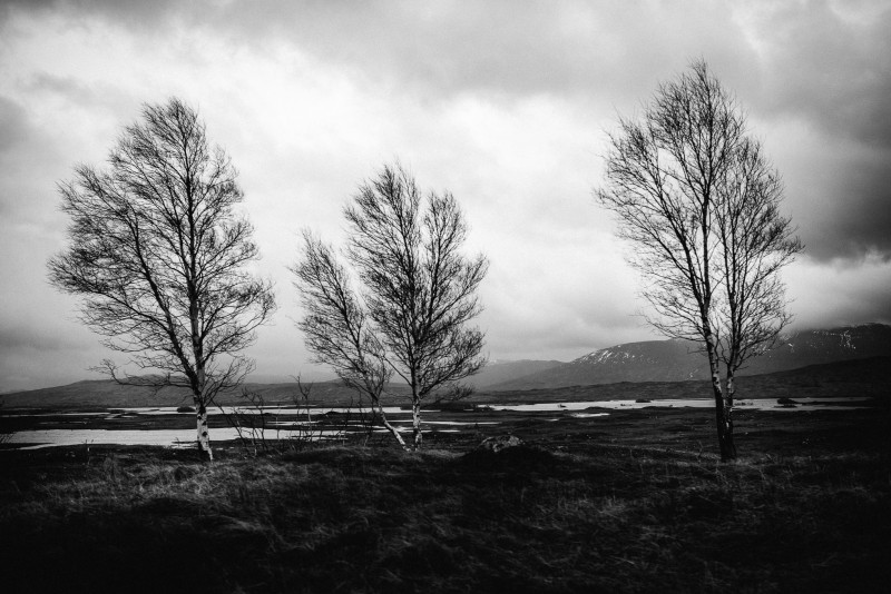 road-4-800x534 Scotland | Fine Art Travel Photography